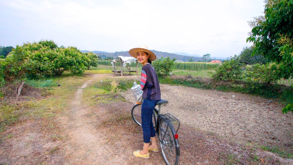 Cycle trip in Chiang Mai: bike along the greenery