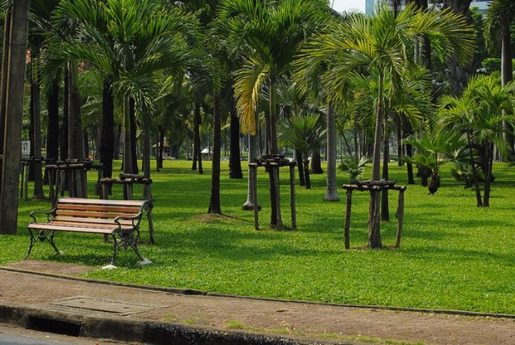 The green park where Thais come to chill and jog