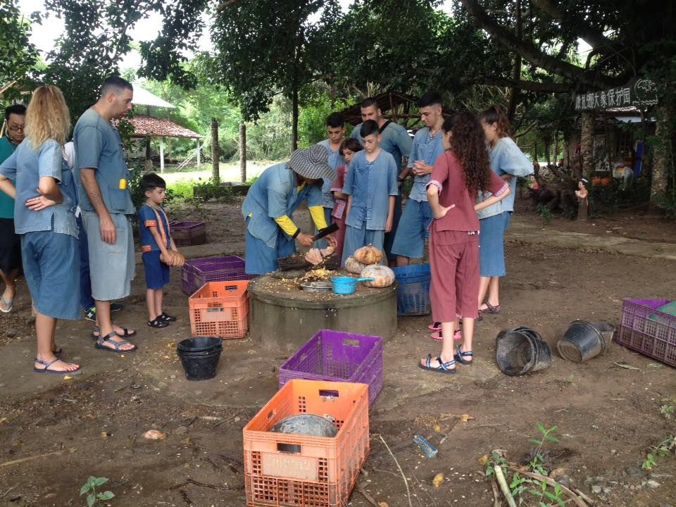 Preparing food for the elephants