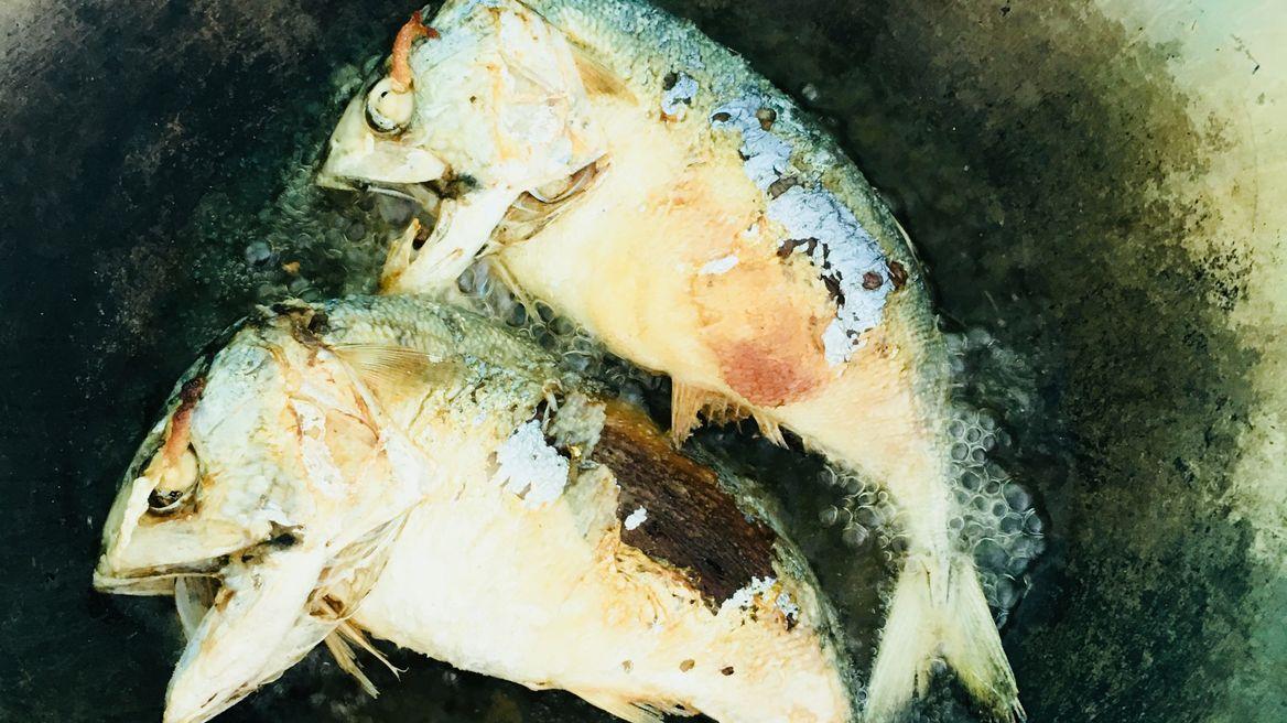 Fried Thai mackerels