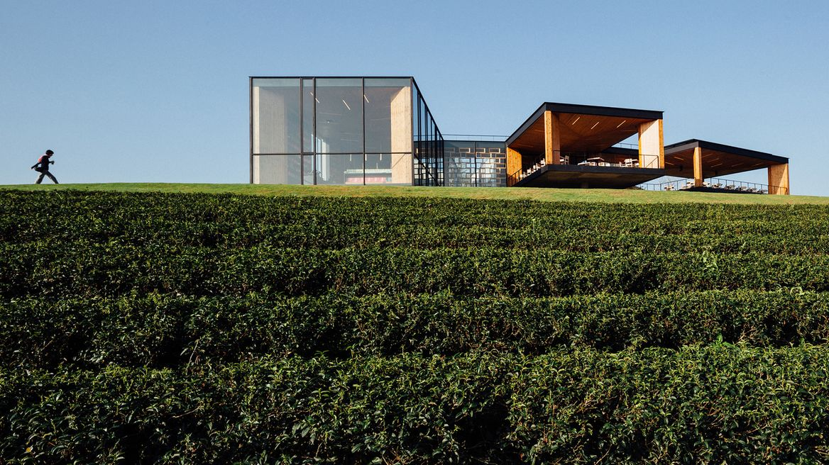 Choui Fong tea plantation : Buildings that are attractive especially for architect