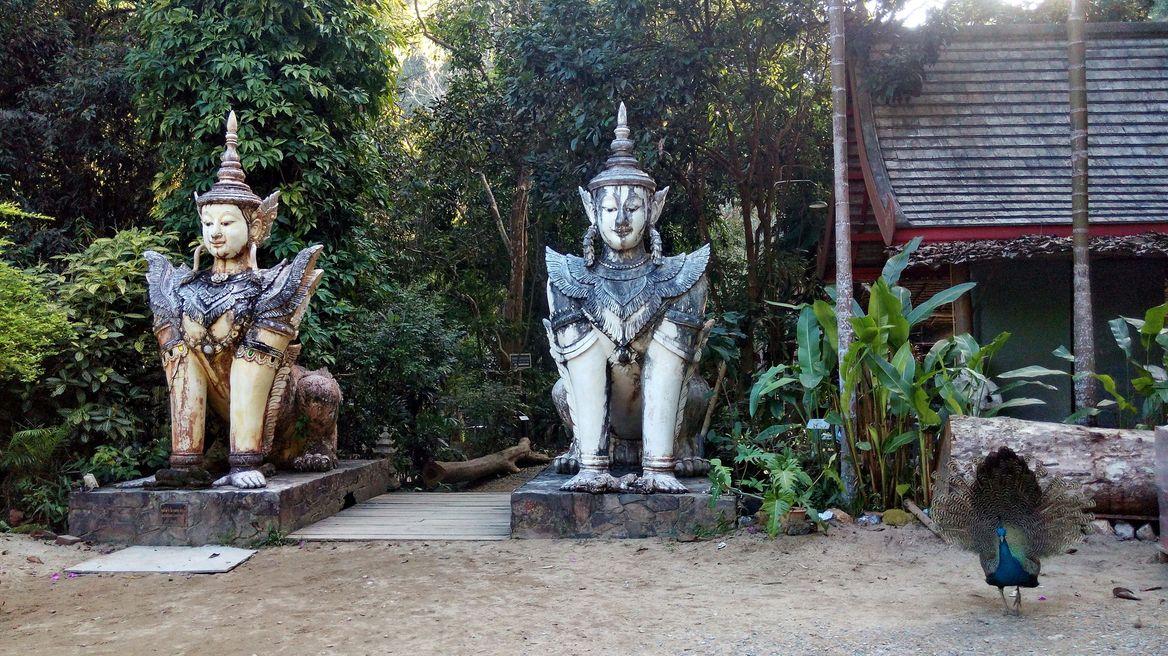 A hidden temple in a jungle