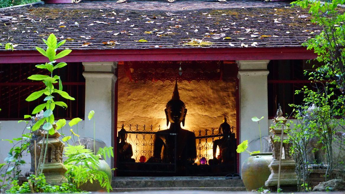 Palad hidden temple