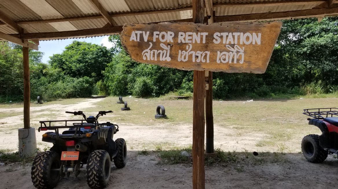 Explore forest with ATV.