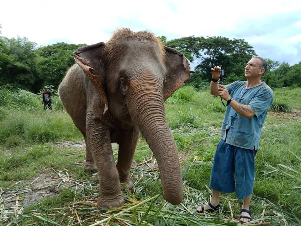 Ethical Elephant Day Care in Chiang Mai