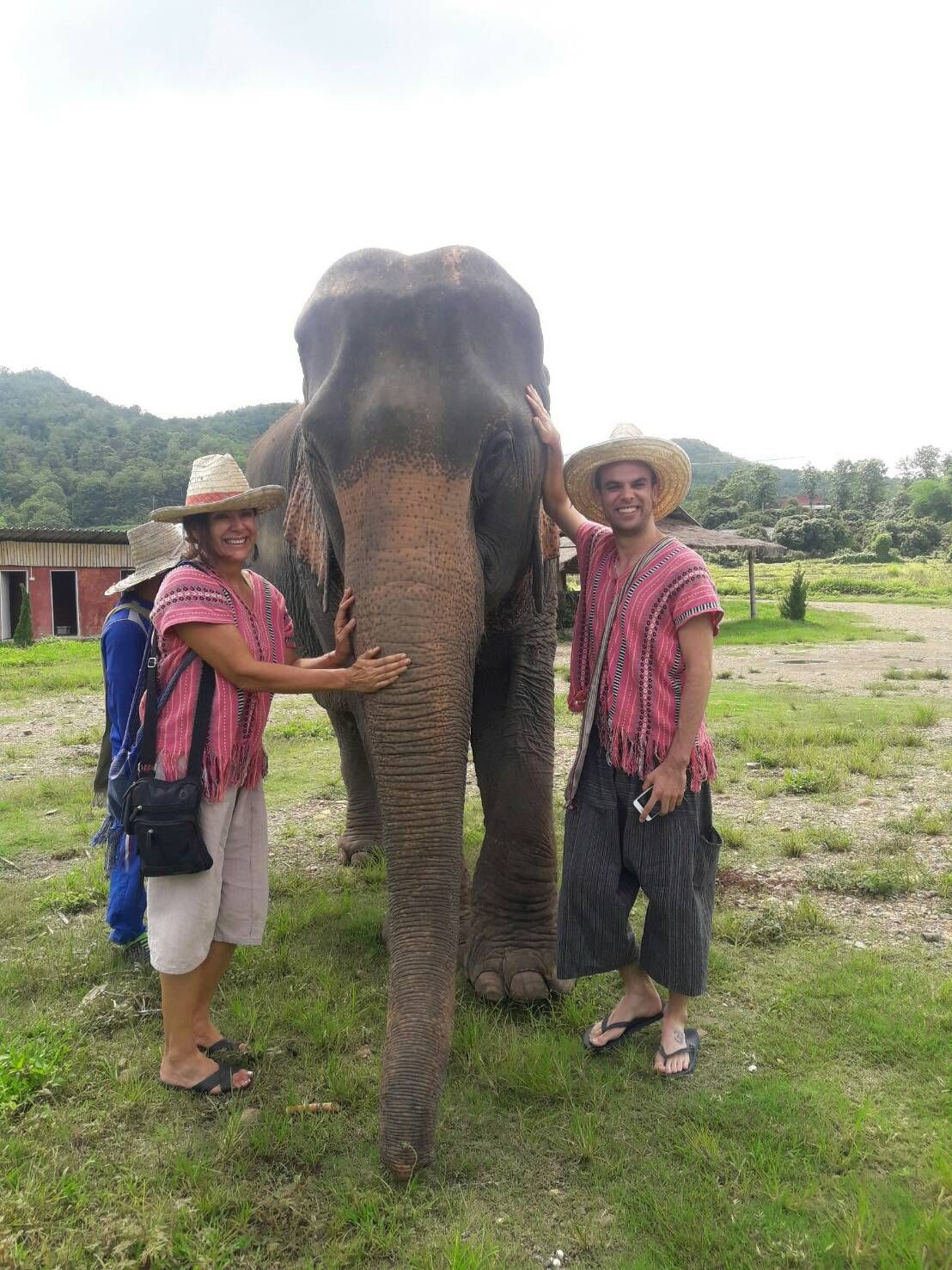 take a photo with elephant