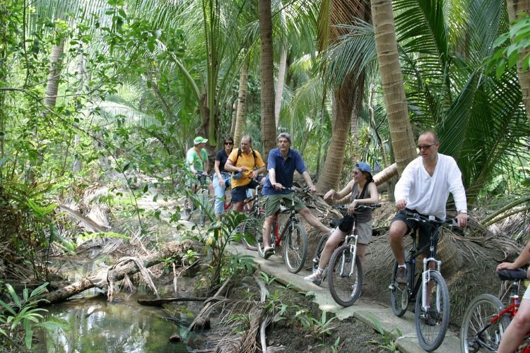 Experience the 'Jungle' of Bangkok
