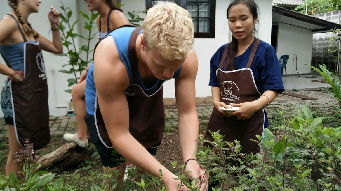 Picking herbs and vegetable for your dishes