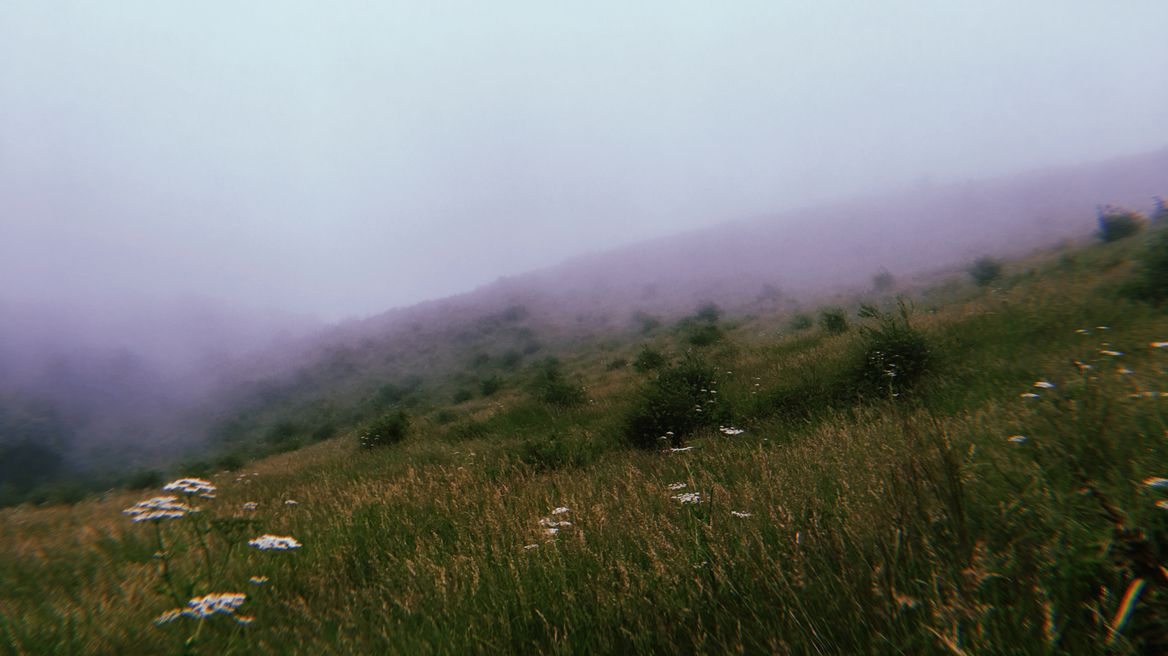 Alpine Field with foggy
