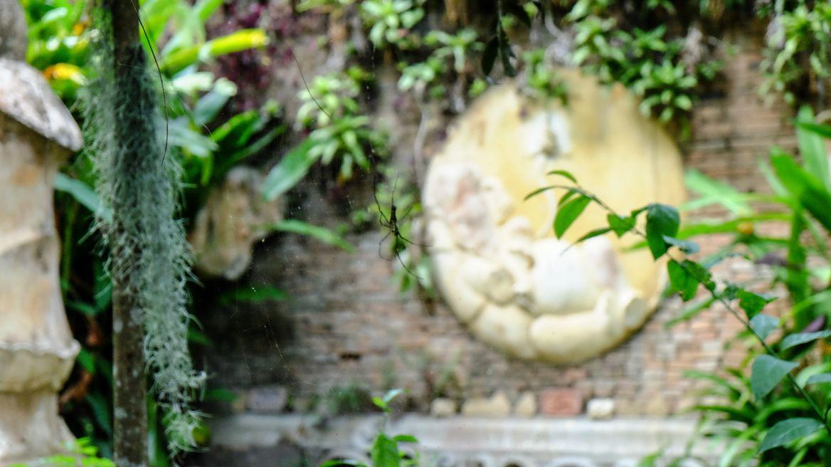 spiritual morning at hidden temple Wat palad