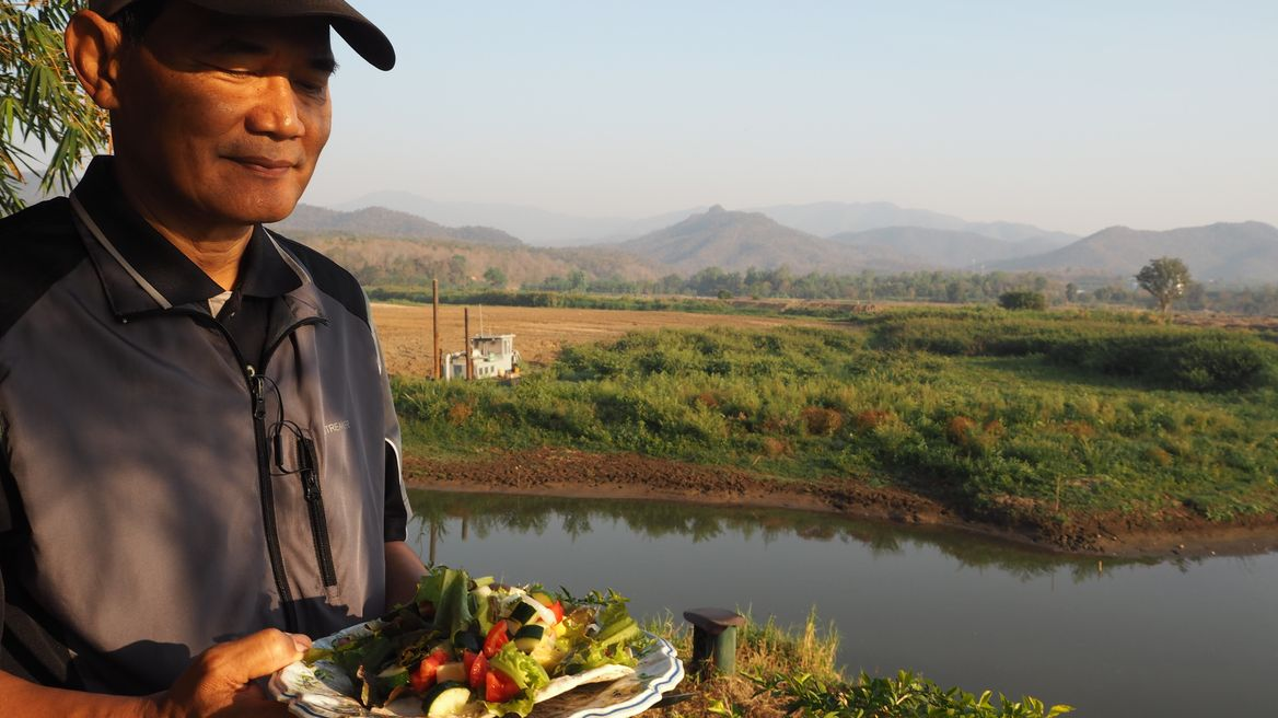 Enjoy fresh vegetable & local grown among nature